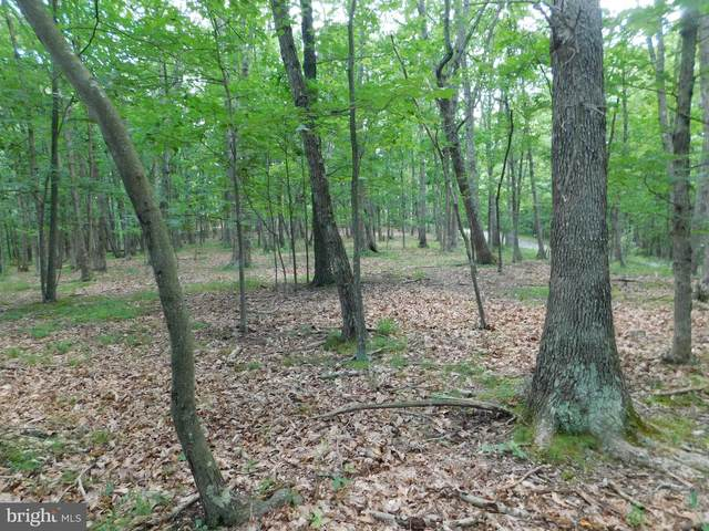 Timberlake Estates - Lot #9 Section 3, NEW CREEK, WV 26743 (#WVMI111214) :: Bic DeCaro & Associates