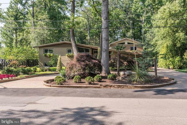 4512 Dolphin Lane, ALEXANDRIA, VA 22309 (#VAFX1138036) :: Eng Garcia Properties, LLC