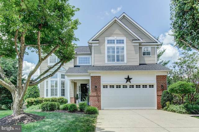 47826 Blockhouse Point Place, STERLING, VA 20165 (#VALO414788) :: LoCoMusings