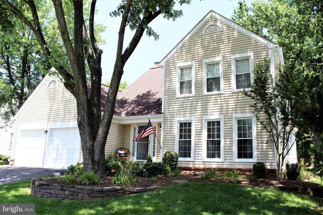 3647 Beech Down Drive, CHANTILLY, VA 20151 (#VAFX1138126) :: AJ Team Realty