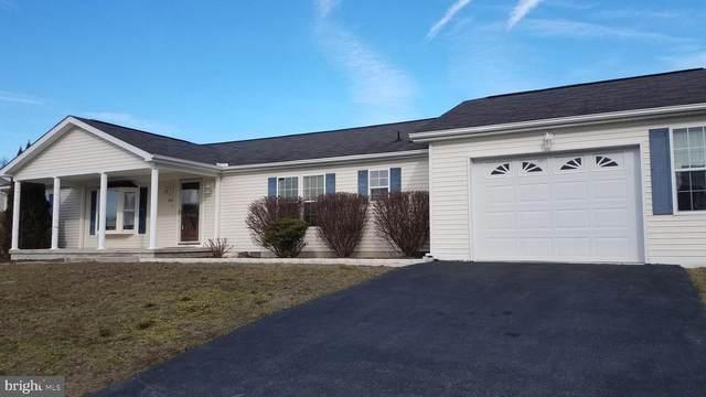 806 Farrall Drive, DOVER, DE 19901 (#DEKT239698) :: Colgan Real Estate