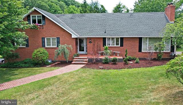 12908 Irene Drive NE, CUMBERLAND, MD 21502 (#MDAL134596) :: Bob Lucido Team of Keller Williams Integrity