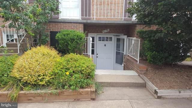 6178 Strasburg Drive, CENTREVILLE, VA 20121 (#VAFX1138378) :: The Redux Group