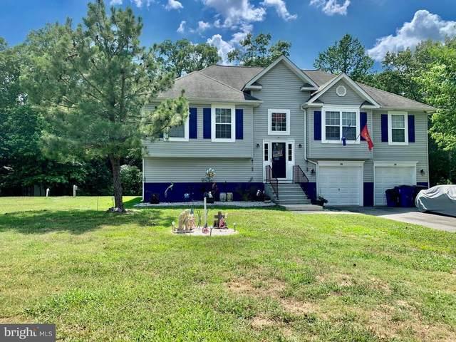 161 Maple Shade Drive, MAGNOLIA, DE 19962 (#DEKT239704) :: Colgan Real Estate
