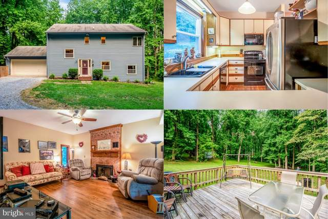38080 Stevens Road, LOVETTSVILLE, VA 20180 (#VALO414928) :: Peter Knapp Realty Group