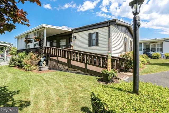 44 Meadow Run Place, HARRISBURG, PA 17112 (#PADA122938) :: The Joy Daniels Real Estate Group
