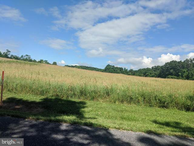 Lot 2A Burnhill Rd, SHERMANS DALE, PA 17090 (#PAPY102296) :: The Joy Daniels Real Estate Group