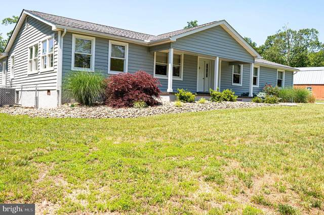 445 Donivans, FALLING WATERS, WV 25419 (#WVBE178276) :: The Team Sordelet Realty Group