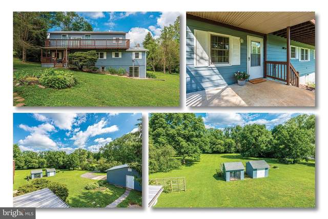9032 Hollow Road, MIDDLETOWN, MD 21769 (#MDFR266746) :: Ultimate Selling Team
