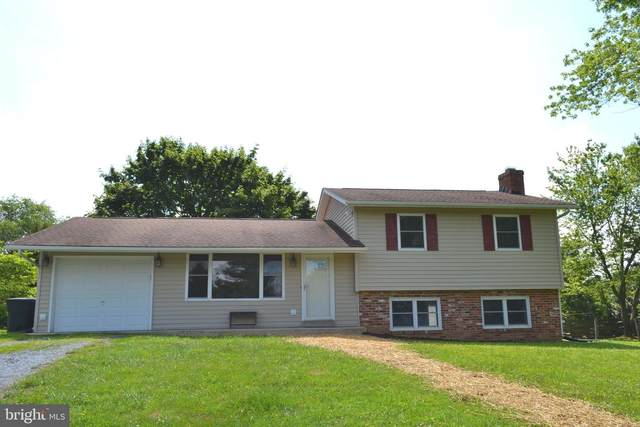 4295 Molesworth Terrace, MOUNT AIRY, MD 21771 (#MDFR266764) :: Ultimate Selling Team