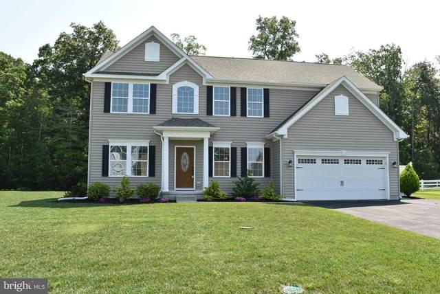 31303 Riverwood Road, MILLSBORO, DE 19966 (#DESU163846) :: Tessier Real Estate