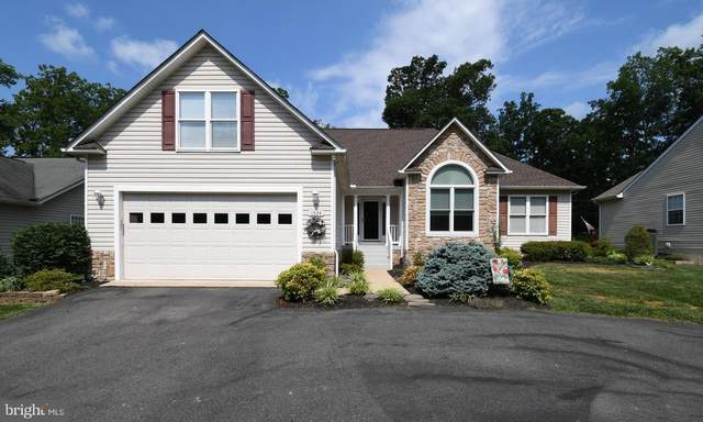 1324 Lakeview Parkway, LOCUST GROVE, VA 22508 (#VAOR136982) :: Network Realty Group