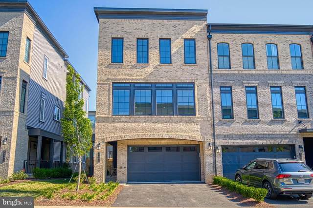 42298 Ashmead Terrace, BRAMBLETON, VA 20148 (#VALO415146) :: Cristina Dougherty & Associates