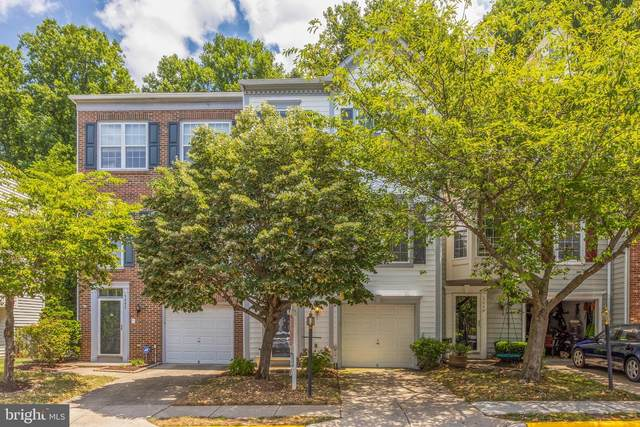 5447 Summer Leaf Lane, ALEXANDRIA, VA 22312 (#VAFX1138908) :: RE/MAX Cornerstone Realty