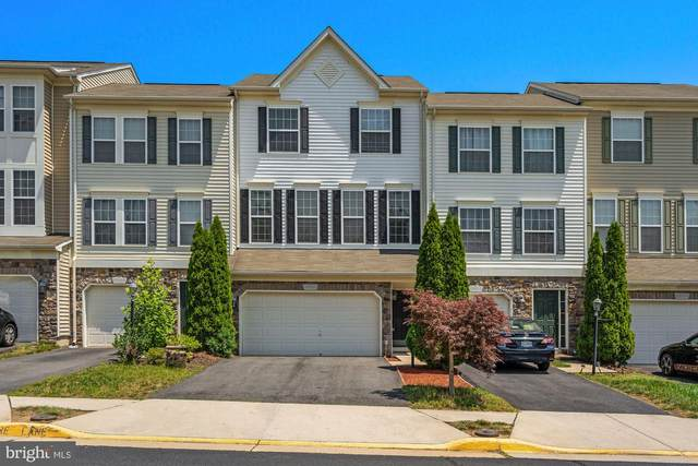 23300 Connie Marie Terrace, ASHBURN, VA 20148 (#VALO415216) :: Jacobs & Co. Real Estate