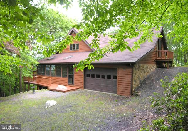 420 Red Fox Road, MAYSVILLE, WV 26833 (#WVGT103254) :: The Bob & Ronna Group