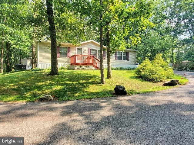 248 Harding Hwy - Rt 40 E-11, NEWFIELD, NJ 08344 (#NJGL260876) :: Ramus Realty Group