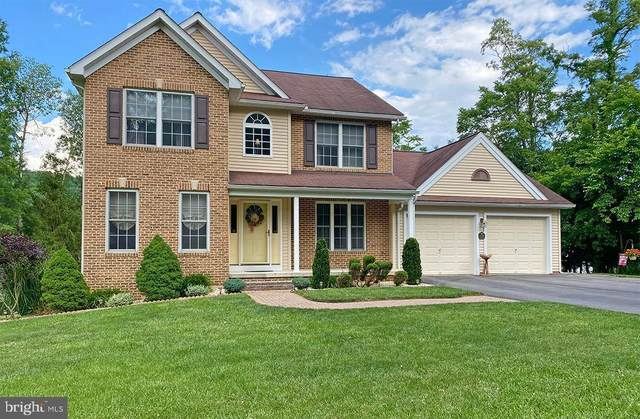 13816 Oleander Drive SW, CUMBERLAND, MD 21502 (#MDAL134632) :: The Dailey Group