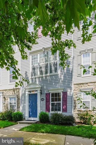 21816 Petworth Court, ASHBURN, VA 20147 (#VALO415250) :: Cristina Dougherty & Associates