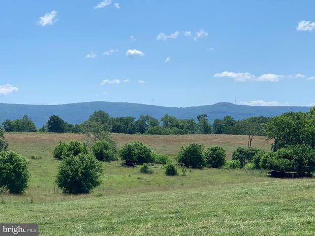Unknown, BERRYVILLE, VA 22611 (#VACL111580) :: Pearson Smith Realty