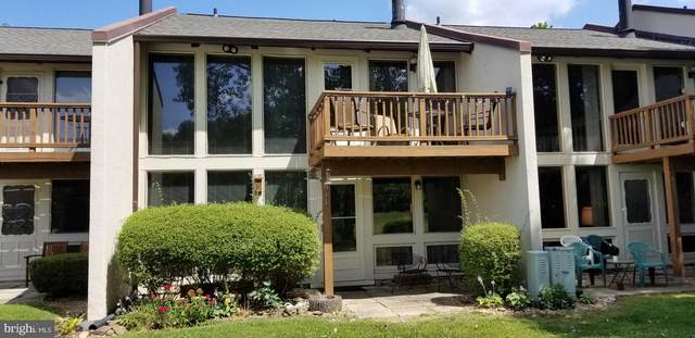 2586 or 2584-UNIT 61 Fairway Drive #611, BASYE, VA 22810 (#VASH119628) :: Speicher Group of Long & Foster Real Estate