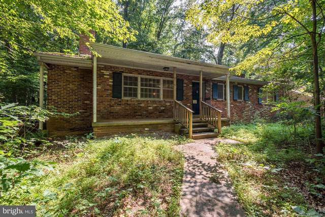 9221 Weant Drive, GREAT FALLS, VA 22066 (#VAFX1139340) :: Network Realty Group