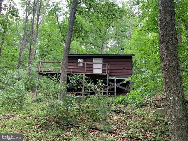 Lot B-6 Meadow View, LOST RIVER, WV 26810 (#WVHD106106) :: AJ Team Realty