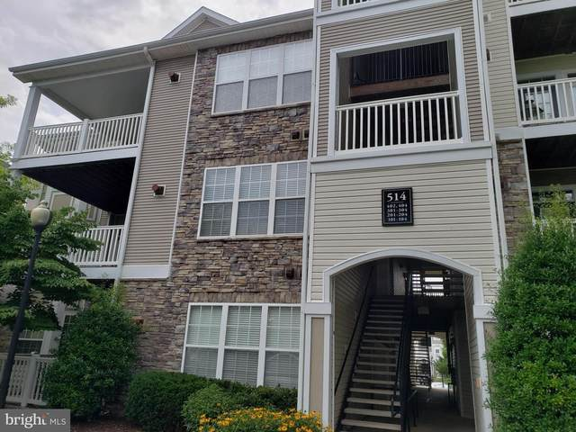 514 Sunset View Terrace SE #301, LEESBURG, VA 20175 (#VALO415370) :: Bruce & Tanya and Associates
