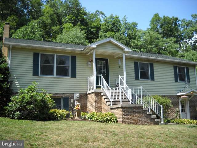 41 Loshes Run Road, DUNCANNON, PA 17020 (#PAPY102316) :: The Joy Daniels Real Estate Group