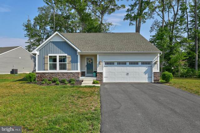 33543 Silver Fox Drive, FRANKFORD, DE 19945 (#DESU164082) :: Sunita Bali Team at Re/Max Town Center