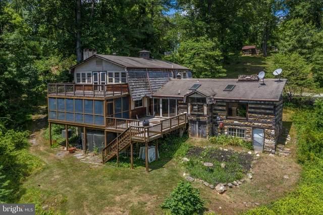 38786 Lime Kiln Road, LEESBURG, VA 20175 (#VALO415452) :: Debbie Dogrul Associates - Long and Foster Real Estate