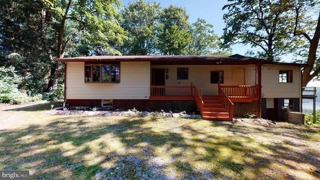13 Birchwood Drive, DELTA, PA 17314 (#PAYK140994) :: Liz Hamberger Real Estate Team of KW Keystone Realty