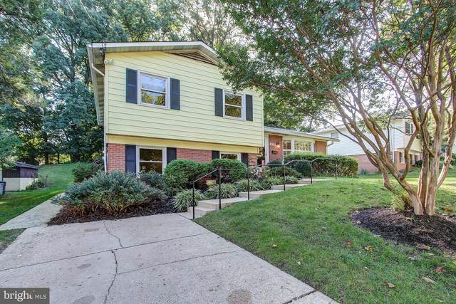 12713 Barbara Road, WHEATON, MD 20906 (#MDMC715102) :: Revol Real Estate