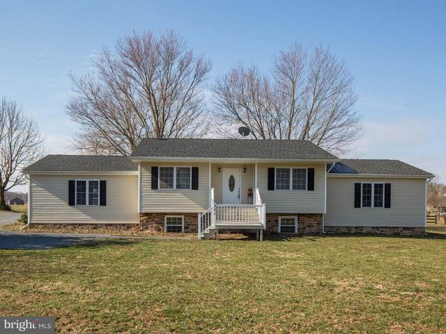 401 Green Spring Road, WINCHESTER, VA 22603 (#VAFV158474) :: Radiant Home Group