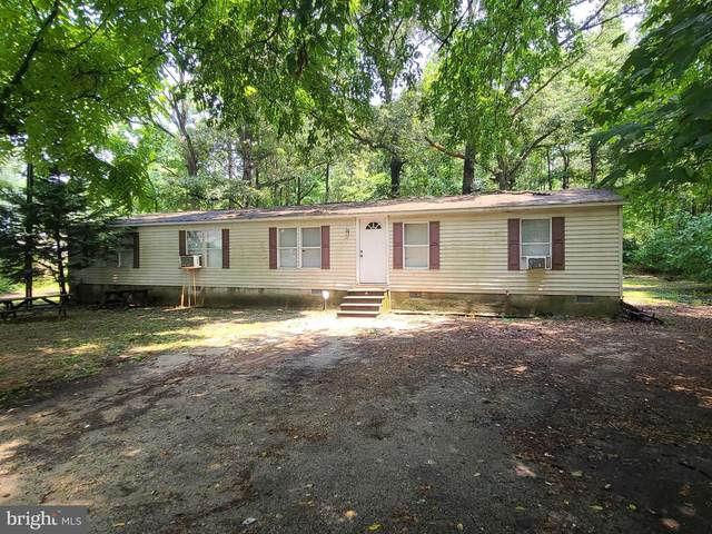 11946 Evans Drive, BRIDGEVILLE, DE 19933 (#DESU164158) :: John Smith Real Estate Group