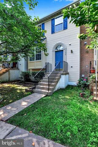 5628 Oakham Place, CENTREVILLE, VA 20120 (#VAFX1139826) :: Jennifer Mack Properties