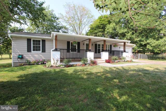 6901 Trout Lane, FREDERICK, MD 21702 (#MDFR267036) :: Bob Lucido Team of Keller Williams Integrity