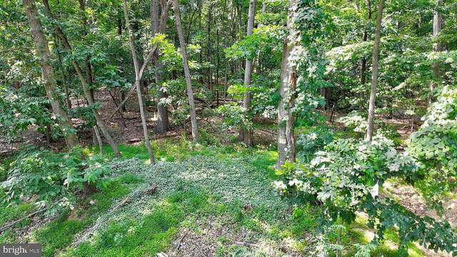LOT 1 Mountain View Road, HARRISBURG, PA 17109 (#PADA123178) :: The Joy Daniels Real Estate Group