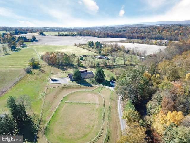 301 Buffalo Creek Road, NEWPORT, PA 17074 (#PAPY102334) :: The Joy Daniels Real Estate Group