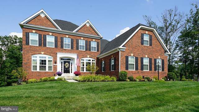 26092 Jawaher Place, ALDIE, VA 20105 (#VALO415540) :: The Sky Group