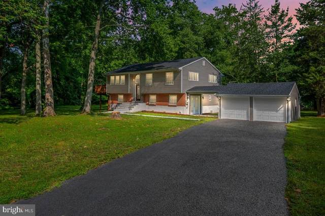 376 Lime Landing Road, MILLINGTON, MD 21651 (#MDQA144536) :: Pearson Smith Realty
