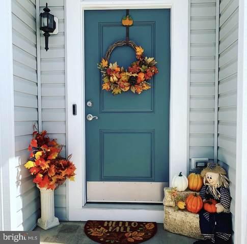 21 Wellspring Drive, FREDERICKSBURG, VA 22405 (#VAST223670) :: Gail Nyman Group