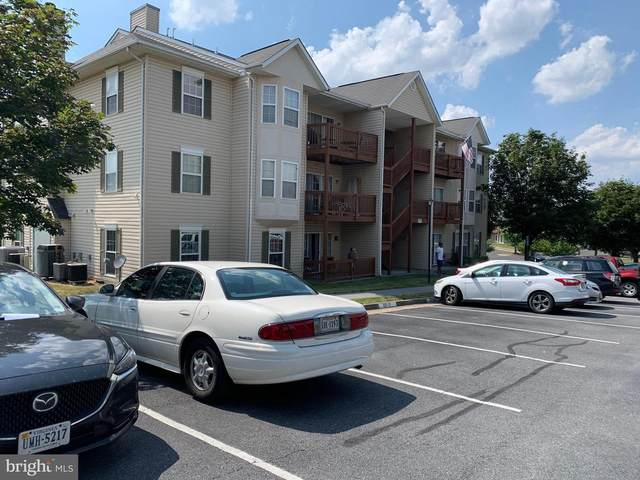 117-12 Brookland Terrace, WINCHESTER, VA 22602 (#VAFV158508) :: Talbot Greenya Group