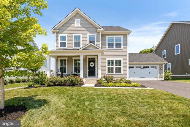 24718 Black Willow Drive, ALDIE, VA 20105 (#VALO415650) :: Talbot Greenya Group