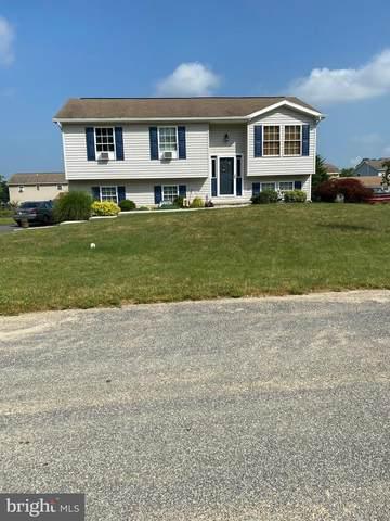 341 Cortland Circle, SHIPPENSBURG, PA 17257 (#PAFL173816) :: Gail Nyman Group