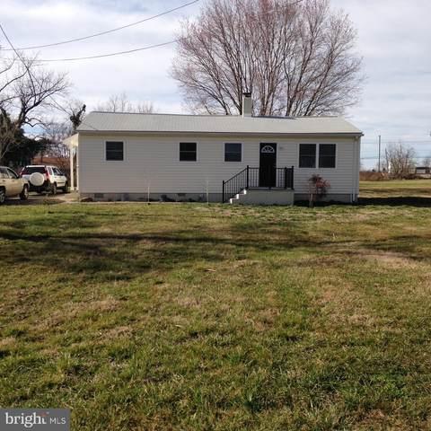 19701 Mount Dumpling Road, BRANDY STATION, VA 22714 (#VACU141934) :: A Magnolia Home Team