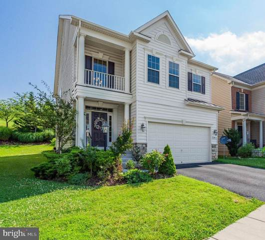 13415 Latrobe Lane, CLARKSBURG, MD 20871 (#MDMC715630) :: Speicher Group of Long & Foster Real Estate