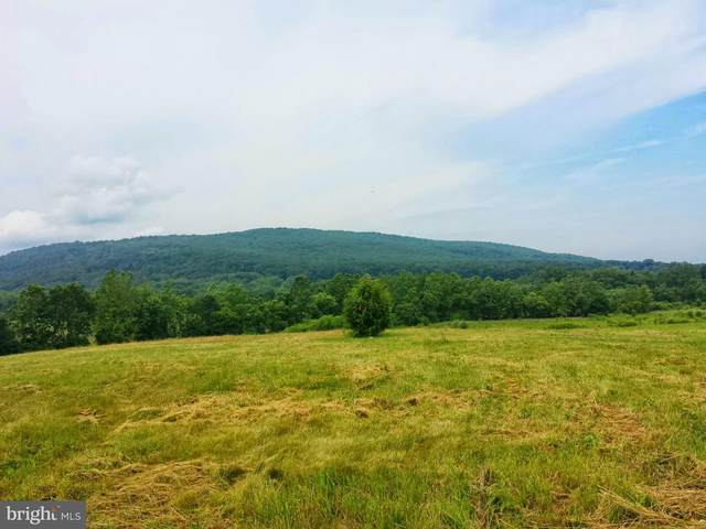 Lot 16 Spring Lane Road, DILLSBURG, PA 17019 (#PAYK141244) :: The Heather Neidlinger Team With Berkshire Hathaway HomeServices Homesale Realty