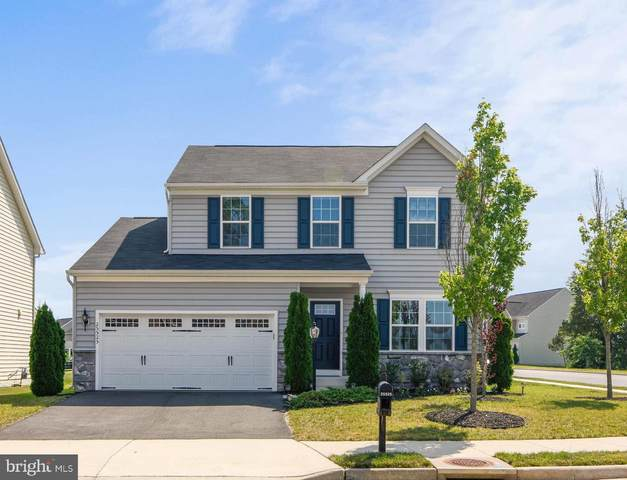 25525 Emerson Oaks Drive, ALDIE, VA 20105 (#VALO415752) :: Talbot Greenya Group