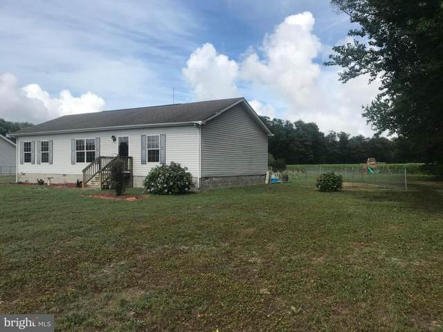 30109 Power Plant Road, DAGSBORO, DE 19939 (#DESU164340) :: Colgan Real Estate